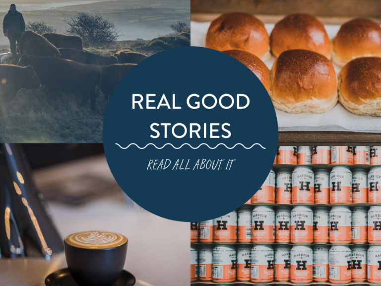REAL GOOD STORIES 2